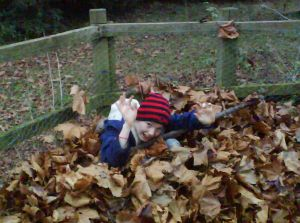 Benedict in a pile of leaves